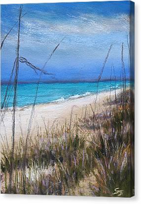 Beach Dreaming Canvas Print by Susan Jenkins