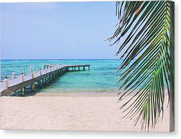 Beach Dreams Canvas Print