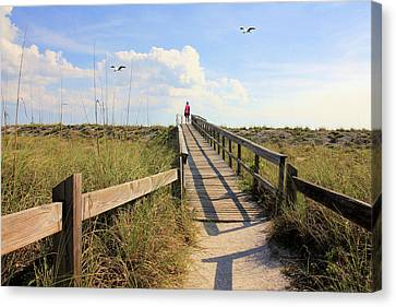Beach Entrance Canvas Print by Rosalie Scanlon