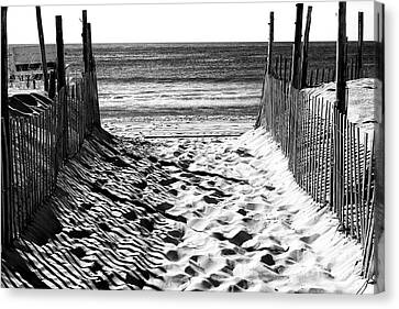 Beach Entry Black And White Canvas Print
