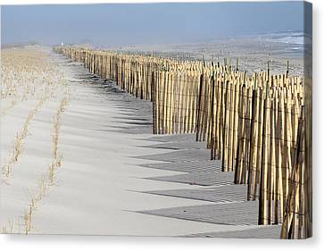 Beach Fence Shirley New York Canvas Print by Bob Savage