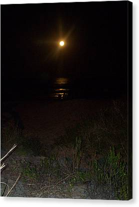 Beach Full Moon Canvas Print by Patricia Taylor