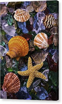 Beach Glass With Starfish Canvas Print by Garry Gay