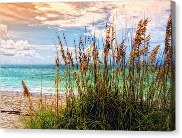 Beach Grass II Canvas Print by Gina Cormier