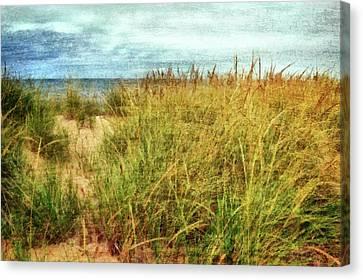 Canvas Print featuring the digital art Beach Grass Path - Painterly by Michelle Calkins