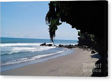 Beach In Bali Near The Tanah Lot Canvas Print by Timea Mazug
