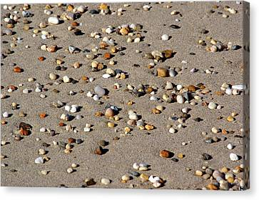 Canvas Print featuring the photograph Beach Jewels by Lynda Lehmann