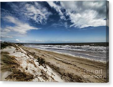 Canvas Print featuring the photograph Beach Life by Douglas Barnard
