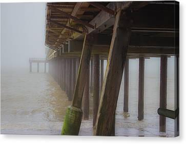 Beach Mist Canvas Print by Martin Newman