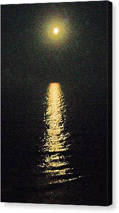 Beach Moonglow Canvas Print by Patricia Taylor