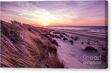 Beach Of Renesse Canvas Print by Daniel Heine