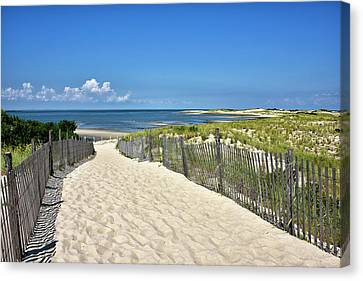Beach Path At Cape Henlopen State Park - The Point - Delaware Canvas Print by Brendan Reals