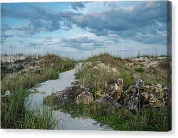 Canvas Print featuring the photograph Beach Path by Louis Ferreira