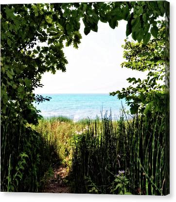 Canvas Print featuring the photograph Beach Path With Snake Grass by Michelle Calkins