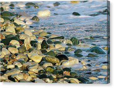 Beach Pebbles Canvas Print by Stelios Kleanthous