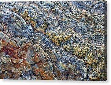 Beach Rock Pattern  Canvas Print by Tim Gainey