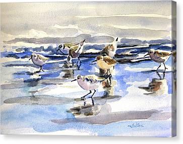 Beach Sandpipers  Canvas Print