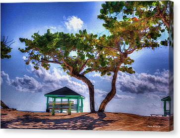 Canvas Print - Beach Scene With Tree by Dan Friend