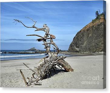 Canvas Print featuring the photograph Beach Sculpture by Peggy Hughes