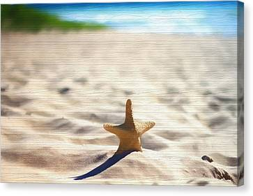 Beach Starfish Wood Texture Canvas Print by Dan Sproul
