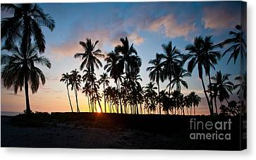 Beach Sunset Canvas Print by Mike Reid