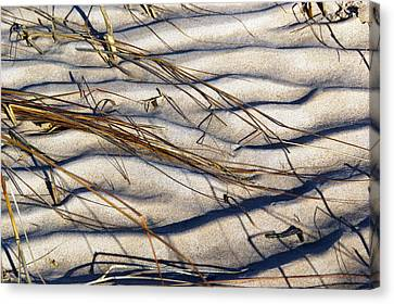 Beach Tapestry Canvas Print by Lynda Lehmann