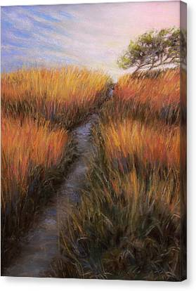 Beach Trail Canvas Print