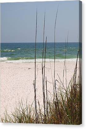 Beach View With Grass Canvas Print by James Granberry