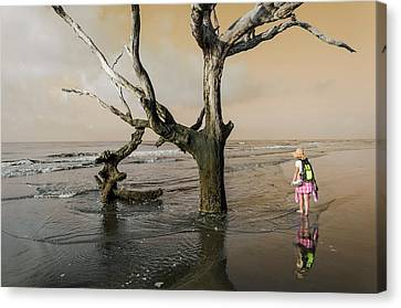Beachcombing Canvas Print by Jim Cook