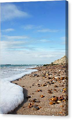 Beachcombing Canvas Print by Terri Waters
