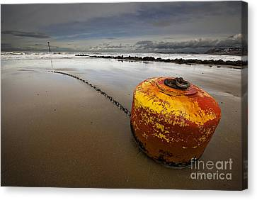 Beached Mooring Buoy Canvas Print by Meirion Matthias