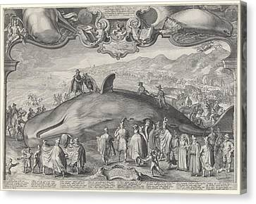 Beached Whale In Beverwijk Canvas Print by Celestial Images
