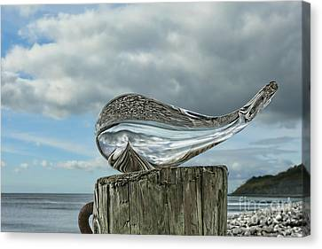 Beached Whale Canvas Print by Susie Peek