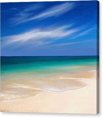 Beachscape Canvas Print by Anthony Fishburne