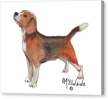 Beagle Watercolor Painting By Kmcelwaine Canvas Print