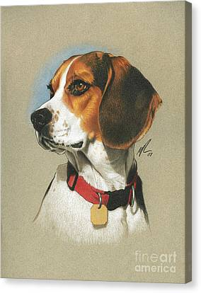 Realistic Canvas Print - Beagle by Marshall Robinson