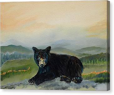 Bear Alone On Blue Ridge Mountain Canvas Print