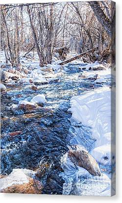 Canvas Print featuring the photograph Bear Creek Lake State Park by Michael Moriarty
