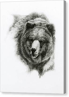 Monotone Canvas Print - Bear by Heather Theurer