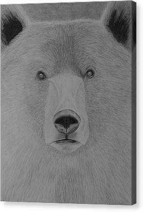 Bear Medicine Canvas Print