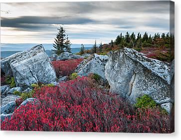 Bear Rocks Preserve West Virginia Canvas Print by Mark VanDyke