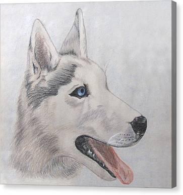 Beare Canvas Print by Jennie  Richards
