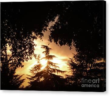 Beaumont Sunset Canvas Print