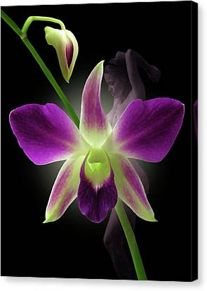 Beauties Canvas Print