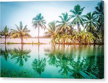 Beautiful Backwater Kerala, India. Canvas Print