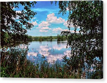 beautiful forest lake in Sunny summer day Canvas Print