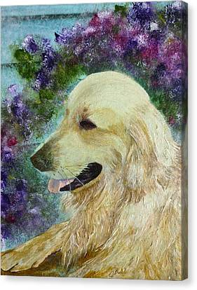 Canvas Print featuring the painting Beautiful Golden by Claire Bull