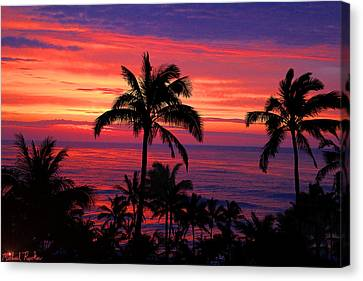 Beautiful Hawaiian Sunset Canvas Print