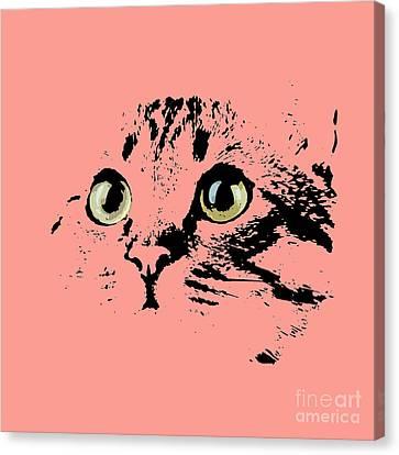 Beautiful Kitten Portrait Canvas Print by Pablo Franchi