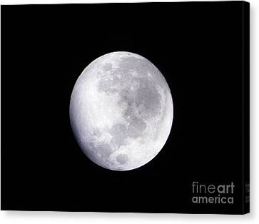Beautiful Moon Canvas Print by Cindy Hudson